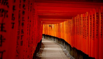 toris rojas del templo de Fushimi-Inari en Kyoto